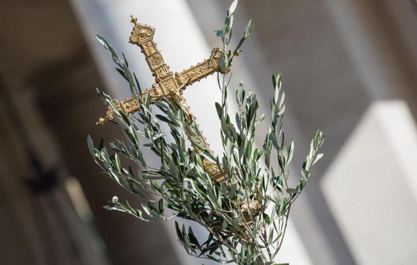 LA DOMENICA DELLE PALME RAVVIVA L'IDENTITÀ CRISTIANA